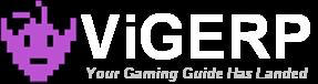 ViGERP Blog